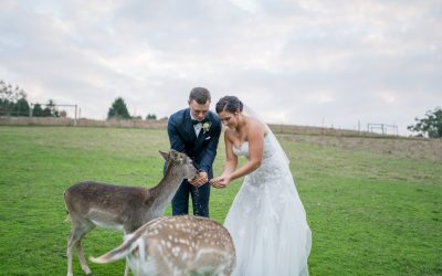 Gum Gully Farm | Leah & Peter's Amazing Wedding