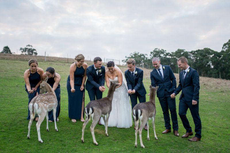 Gum Gully Farm Wedding Photography Melbourne (49)