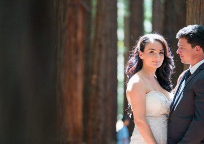 Redwood Forest | Siobhan & Brayden's Wedding