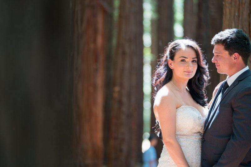Redwood Forest   Siobhan & Brayden's Wedding