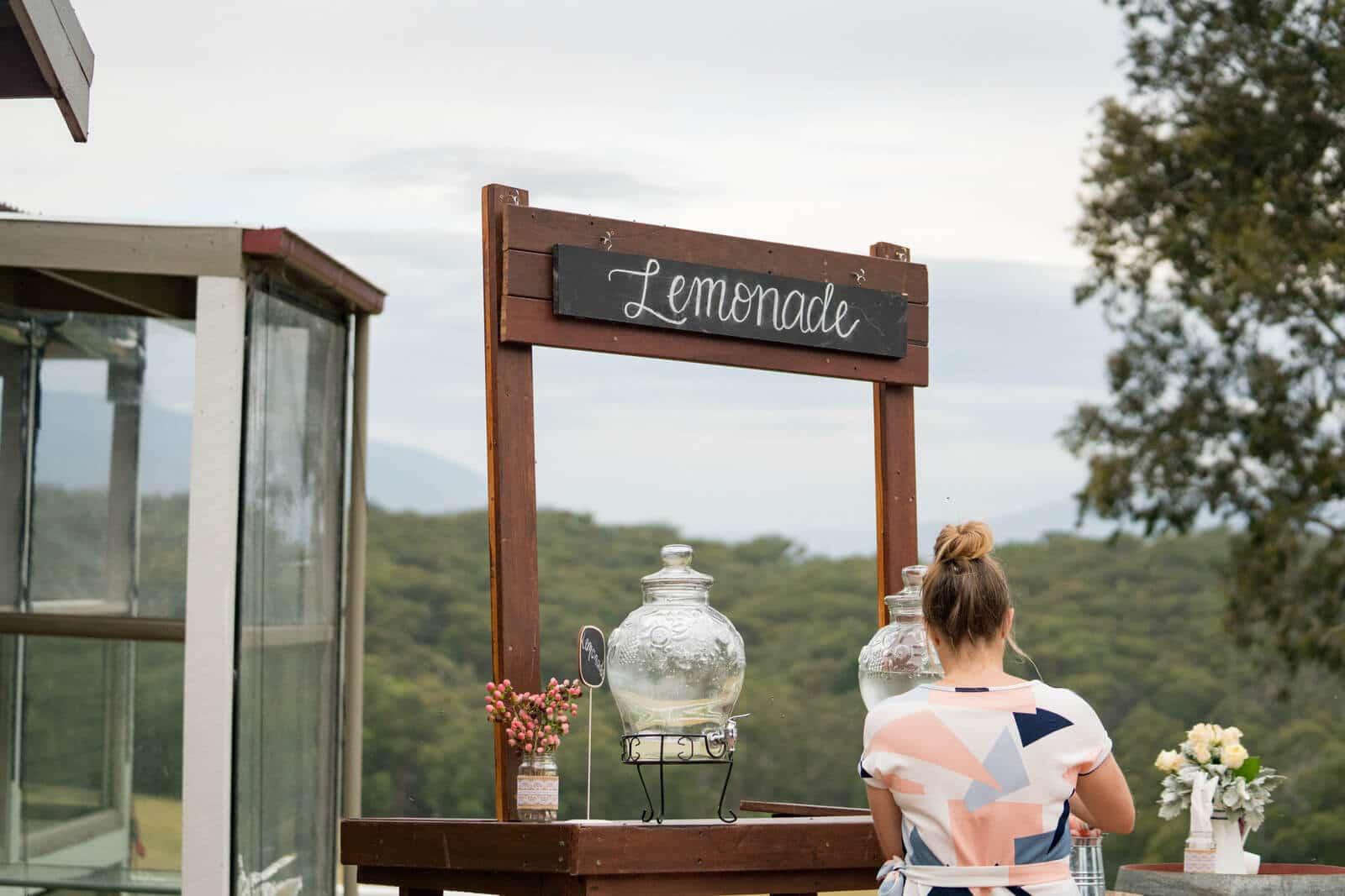 Wandin Park Estate   Wedding Reception
